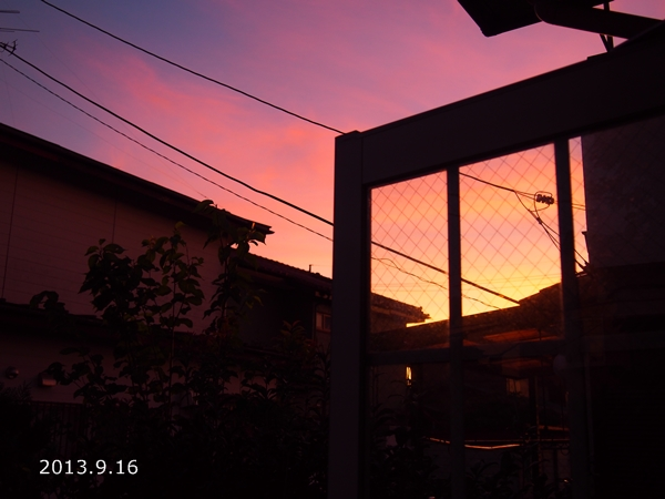 P9160013.jpg