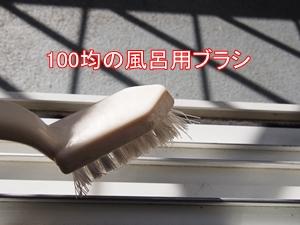 PC130001-1.jpg