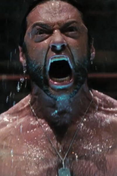 08121601_X-Men_Origins_Wolverine_00s.jpg