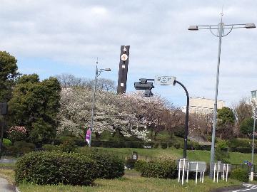 1国会前庭園(1)
