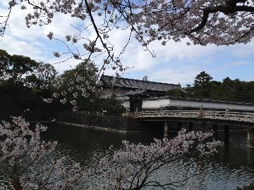 3月26日皇居6(1)