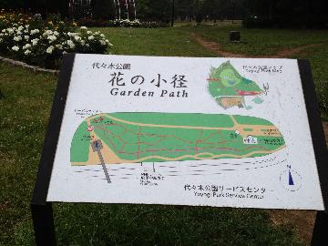 5月11日代々木公園3(1)