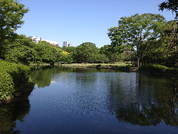 5月24日北の丸公園02(1)