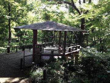 5月31日北の丸公園