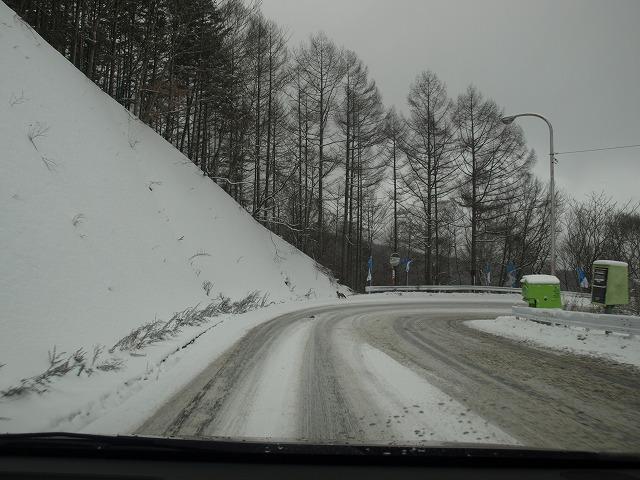20131212大門峠を越えてキツネ (1)