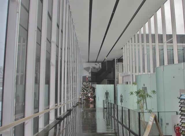 20131219市民会館のクリスマスツリー (1)