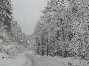 20131220御射鹿池と3号カーブの雪情報 (5)