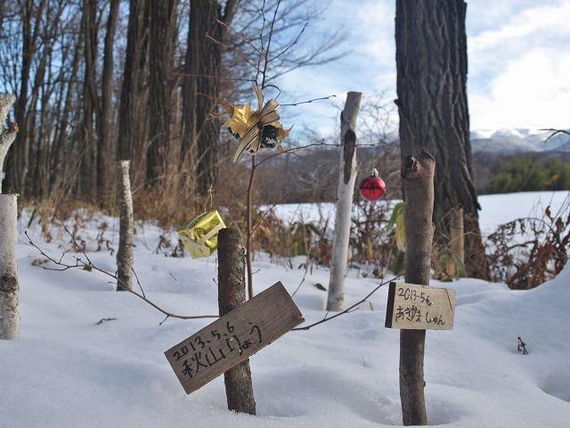 20131223雪の悠心荘の森 (8)