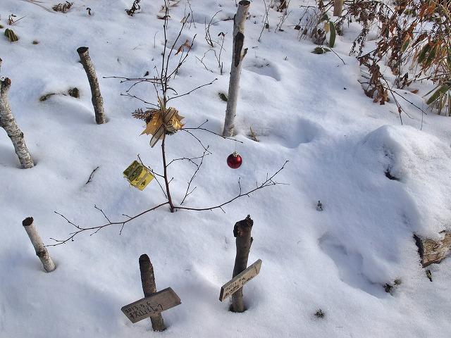 20131223雪の悠心荘の森 (12)