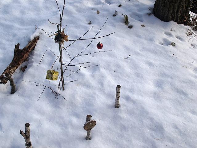 20131223雪の悠心荘の森 (13)