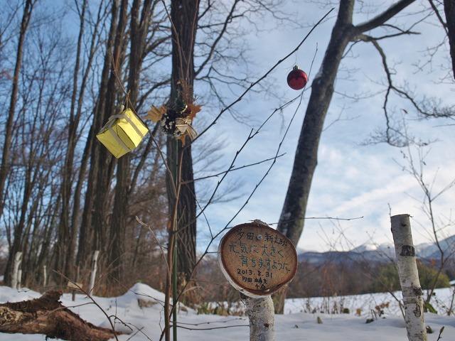 20131223雪の悠心荘の森 (16)