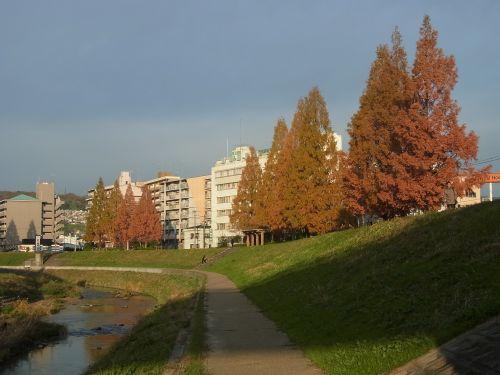 2013-11-27 006