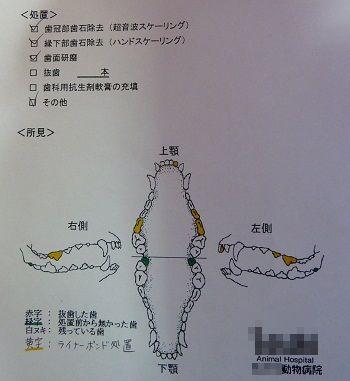 25-5-2up4.jpg