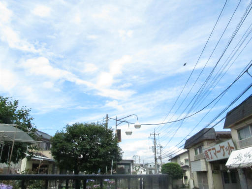 20130622・晴れのち雨01-2