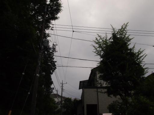 20130622・晴れのち雨13