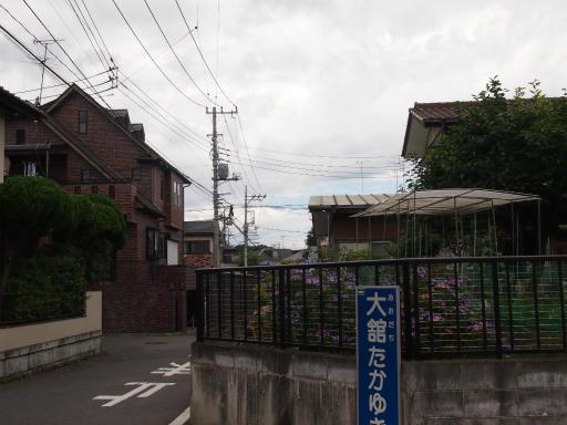 20130622・晴れのち雨12