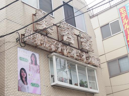 20130713・多磨ネオン05・多磨霊園