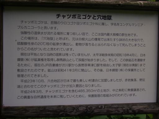 20130721・群馬8-19・大