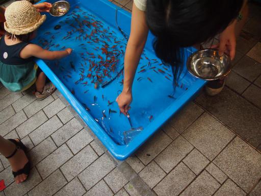 20130811・阿佐ヶ谷七夕祭2-04