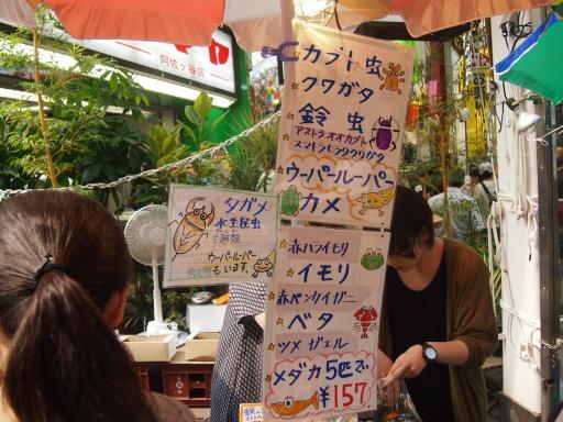 20130811・阿佐ヶ谷七夕ビミョー08