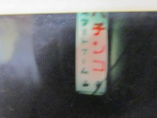 20130808・親戚のアルバム2