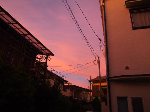 20130916・小手指散歩4-21