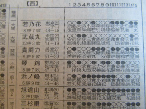20130919・相撲09-07