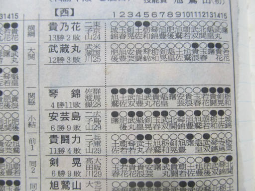 20130919・相撲15-06