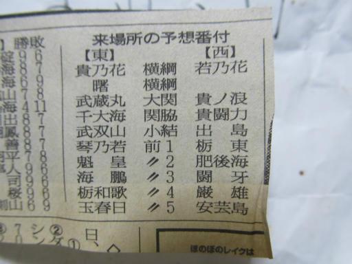 20130919・相撲16-03