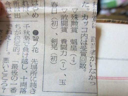 20130919・相撲17-03