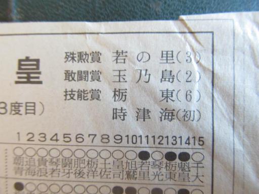 20130919・相撲29-04