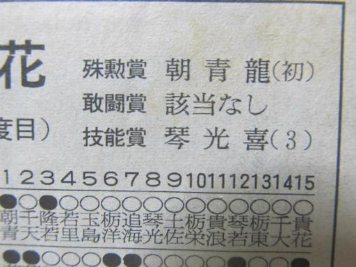 20130919・相撲31-04