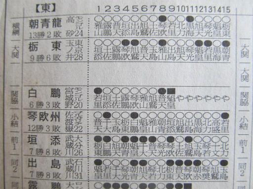 20130919・相撲41-05