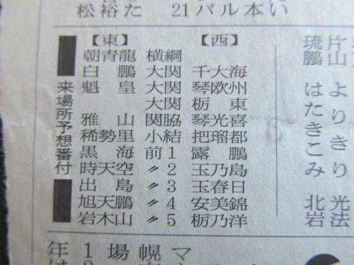 20130919・相撲43-03
