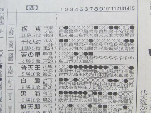20130919・相撲73-05
