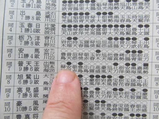 20130919・相撲75-07
