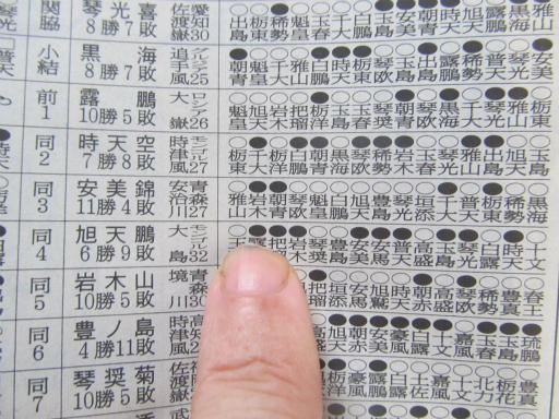 20130919・相撲75-06