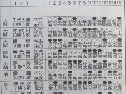 20130919・相撲75-05