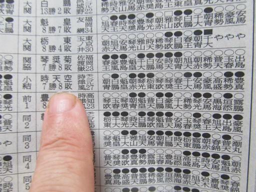 20130919・相撲77-07