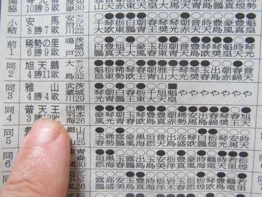 20130919・相撲77-08