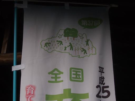 20131010・ネオン04・埼玉県民の森