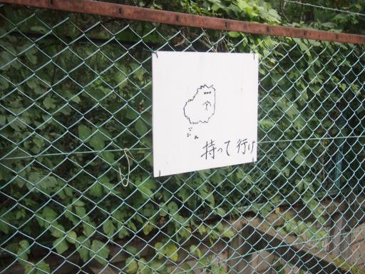 20131010・ネオン01・近所