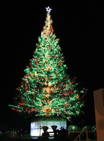 函館クリスマス2013-4