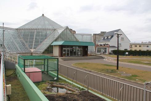 函館市熱帯博物園-1