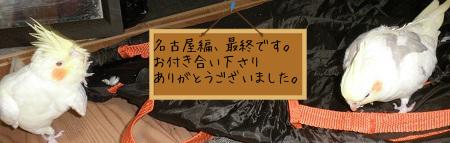 ありがとうございました(#^.^#)