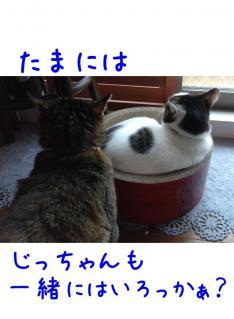 image_20130614231105.jpg