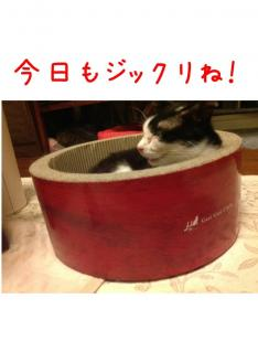image_20130707235111.jpg