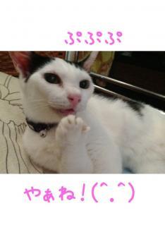 image_20130804234507bc7.jpg
