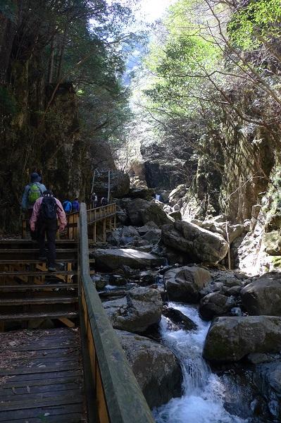 130428-山歩倶楽部 (7)
