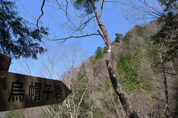 130428-山歩倶楽部 (12)